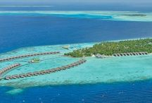 Ayada Maldives Resort & Spa / Traditional thatched-roof water-villas stand on stilts over the resort's peaceful lagoon, while beach villas offer absolute privacy amid tropical greenery alongside powder-soft palm-lined white beaches. Food lovers can explore the six restaurants, while those seeking complete relaxation will find their haven in the large spa which boasts a Turkish Hammam and eight private treatment villas.