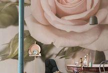 wall / furnishings