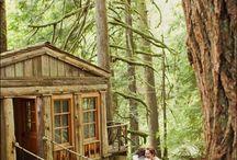 Tree house shoot