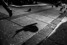 BLOG di Adriano Cascio Fotografie