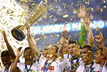 Mexico wins 2015 CONCACAF Gold Cup / Mexico wins CONCACAF Gold Cup title for seventh time