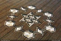 Crop Circles Design Inspiration