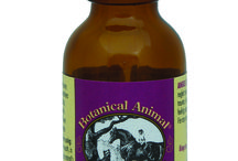 Arenus Products For Dog / All Arenus products dedicated to your dog