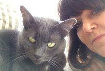 PSPNeighborhood / Pet health and wellness / by Bry Birmingham