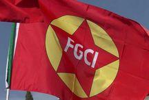 Costituente FGCI (2016)