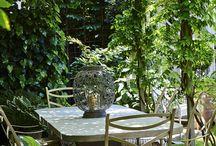 Garden Inspo.