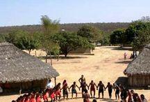 Povos Indígena