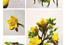 Crochet / kvety, motýle, lístočky