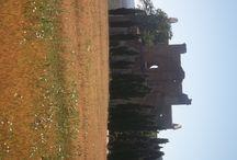 """San Galgano / Abbazia nelle cui vicinanze st trova la famosa """"Spada nella roccia"""", conficcata dal nobile Galgano Guidotti nel 1191 - foto del 23 giugno 2012"""