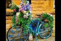 Garden Bikes