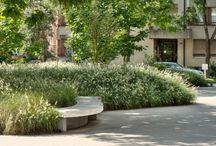 Zeleň, park a posedenie