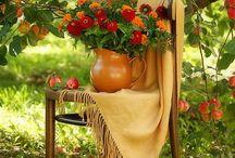 garden  flower  herb