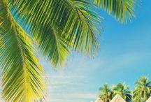 Pacific Islands / Traveling in the Paficic. Pacific travel guides, Pacific itineraries, Pacific destinations, things to do and see in the Pacific and Pacific travel tips. Countries: Fiji, Kiribati, Marshall Islands, Micronesia, Federated States of Nauru, Palau, Samoa, Solomon Islands, Tonga, Tuvalu, Vanuatu, Papua New Guinea.