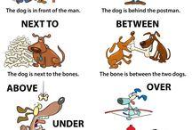 Aj grammar exercises