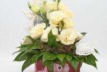 Цветы в коробке / коробка с цветами, flowers, цветы в интерьере, коробка с , цветы, оригинальный подарок, цветы в подарок