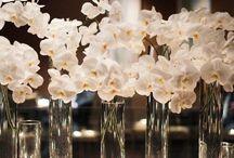Flowers Flowers Flowers / by Diatti Jewelry™