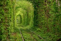 Natural wonders to visit