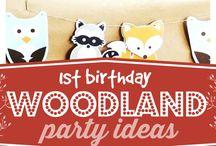 CELEBRATE- Woodland Party Ideas