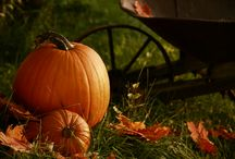 Hello Fall! / Decorating and recipe activities for the fall season / by Wheaton World Wide Moving