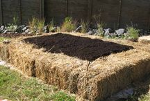 Straw bale raised beds