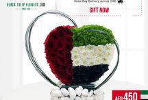 UAE National Day Collections