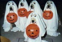 Halloween / by Margaret Bennett
