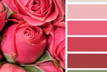 Kleur keuses - pienk/pers