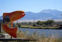 Artistic License / All things creative! Paintings, murals, statues, sculptures, artists, performers and more, all with a tie to SouthWest Montana.