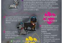 beneficios del perro para los humando
