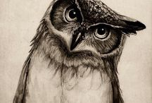 Sowy - Owls