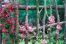 Fences/gates/pergolas/other structures