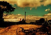 Landscape Photography / by Sandra Graham