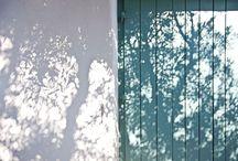 Shadow / Light