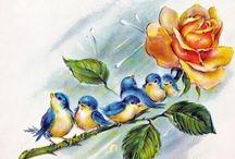 Pajaros y flores
