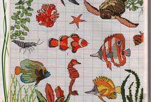 křižková ryby