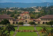 Stanford University / University