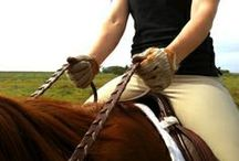 riding exercises
