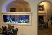 Aquariumz