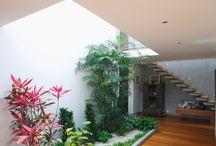 lakásban kert