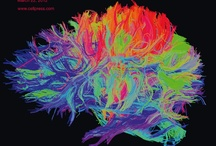 The Neuron Project / Neurology, physiotherapy, rehabilitation