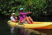 Family Adventure Vacation / Information regarding adventure vacations for families.