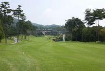 대한민국 골프 / 아름다운 대한민국의 골프장과 골프의 모든것의 핀