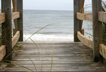 Favorite Places & Spaces / by Sandy Mendenhall
