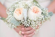 Bride/ Bridesmaids Flowers