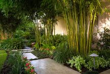 Asiatic Style Gardens