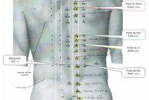 Médecine chinoise du corps