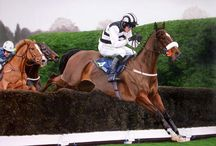 Race Horses In Art 07A- National Hunt Horses / Notable UK and IRE Chasers and Hurdlers