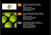 Fruitera Segrià SCCL / Cooperativa de Fruita de Vilanova del Segrià