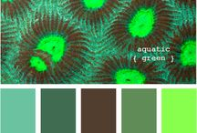Color Inspiration / by Mindy Bryde