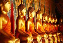 Sri Lanka / Un'immersione nella natura incontaminata e nella cultura di questo splendido paese. Lasciatevi incantare dalle magiche atmosfere di antichi luoghi di culto e sperimentate le emozioni di avvicinare i pachidermi all'orfanotrofio degli elefanti, o di ammirare quello che forse è l'albero più vecchio del mondo allo Sri Maha Bodhi. Lo Sri Lanka è uno scrigno di meraviglie e bellezze.